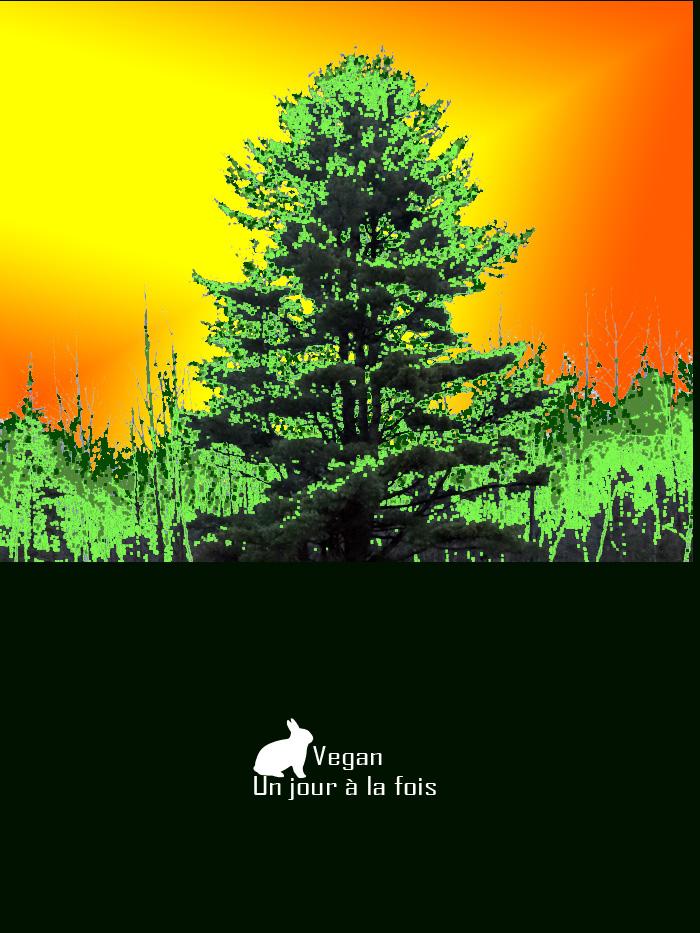 arbre vegane
