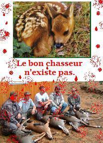 Barbarie de la chasse , le bon chasseur n'existe pas.