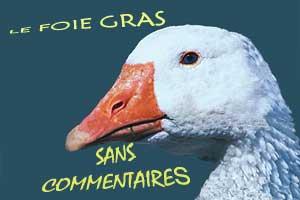 foie gras cruauté