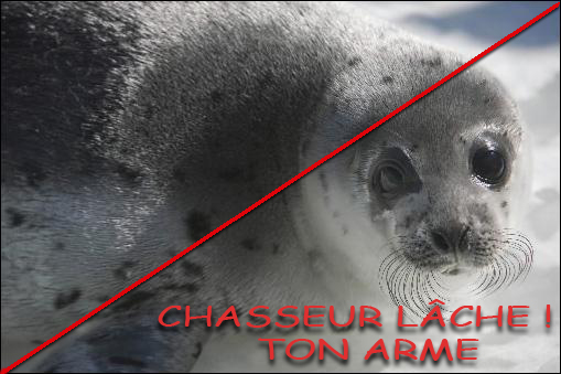 Chasseur  Lche ton arme 