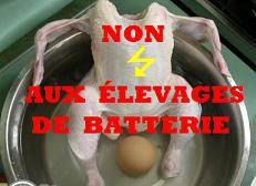 non a l'levage en batterie