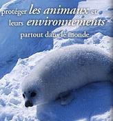 affiche protegeons  tous les animaux