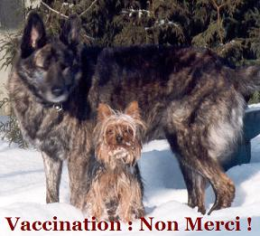 Vaccination : Non merci Arnaque