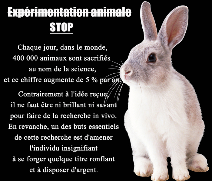 vivisection, expérimentation animale